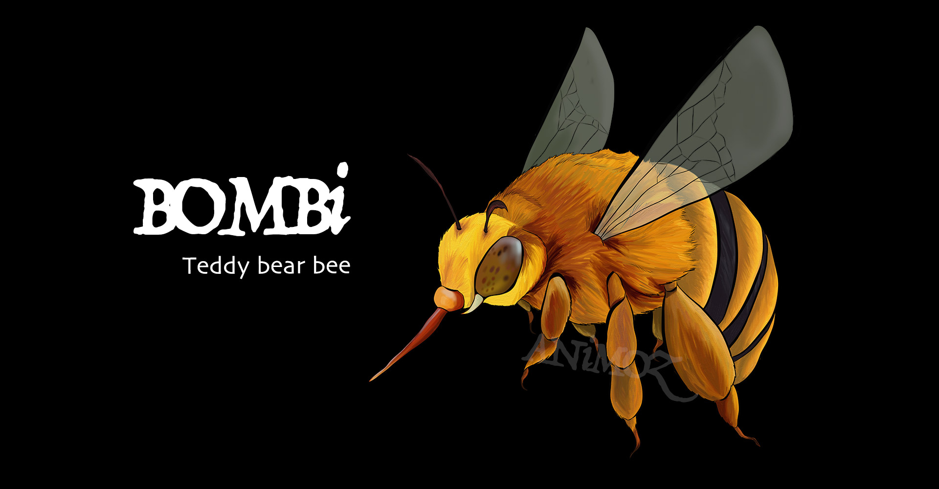 Australian animals - ANiMOZ - Fight for Survival - Teddy Bear Bee - Pollinator - Save the Bees
