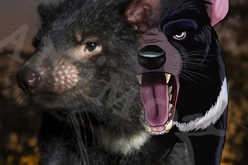 Aussie Ark, ANiMOZ, Tasmanian Devil, Australian conservation