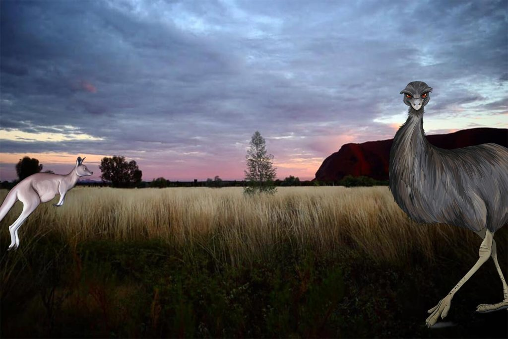 ANiMOZ - Fight for Survival - Australia - Animals - Emu - Kangaroo - Uluru - Illustration