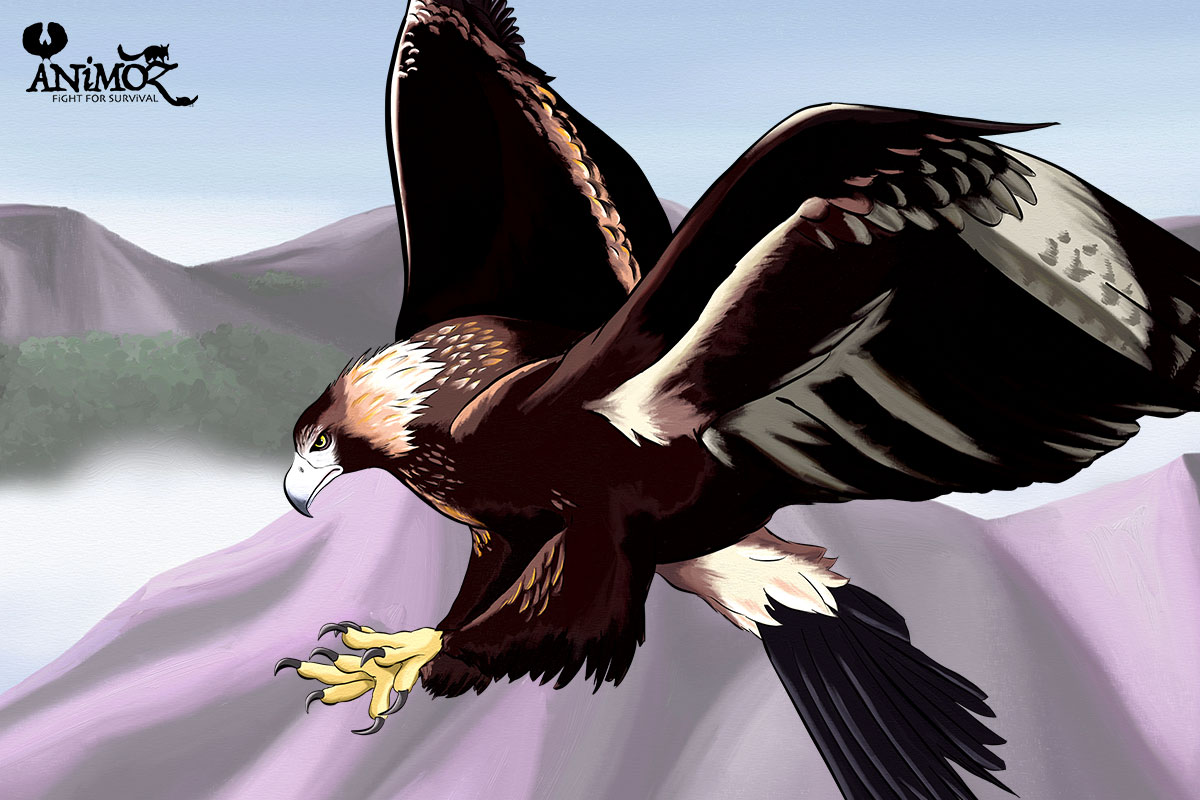 AUDAX - Wedge-tailed eagle - ANiMOZ - Fight for Survival - The game changing conservation - Collectible Card Game