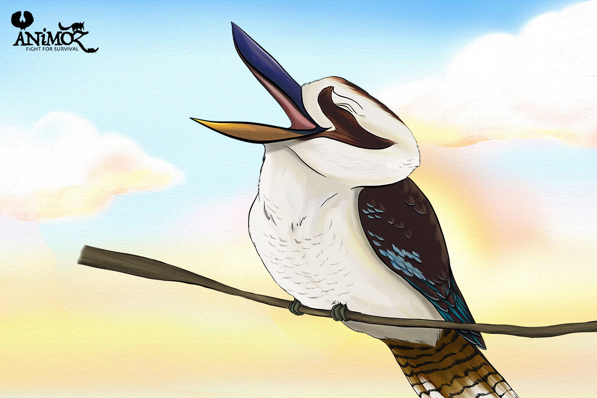 NOVA - Laughing kookaburra - ANiMOZ - Fight for Survival - The game changing conservation - Collectible Card Game