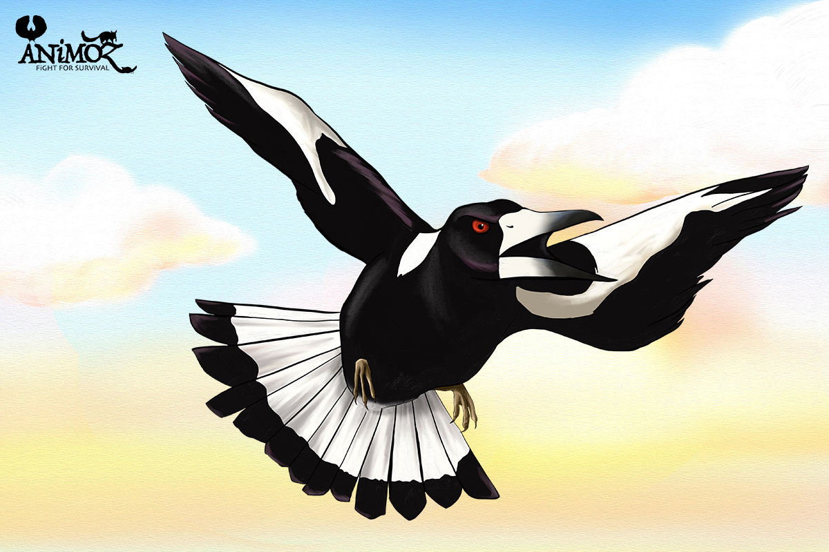 TiBi - Black-backed magpie - ANiMOZ - Fight for Survival - The game changing conservation - Collectible Card Game