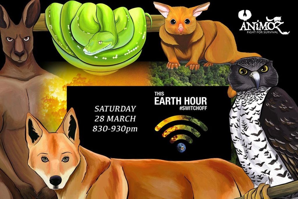 Earth Hour 2020 - ANiMOZ by candlelight - ANiMOZ - Fight for Survival - what to do during Earth Hour 2020 - Card Game of Australian animals - Games for Kids