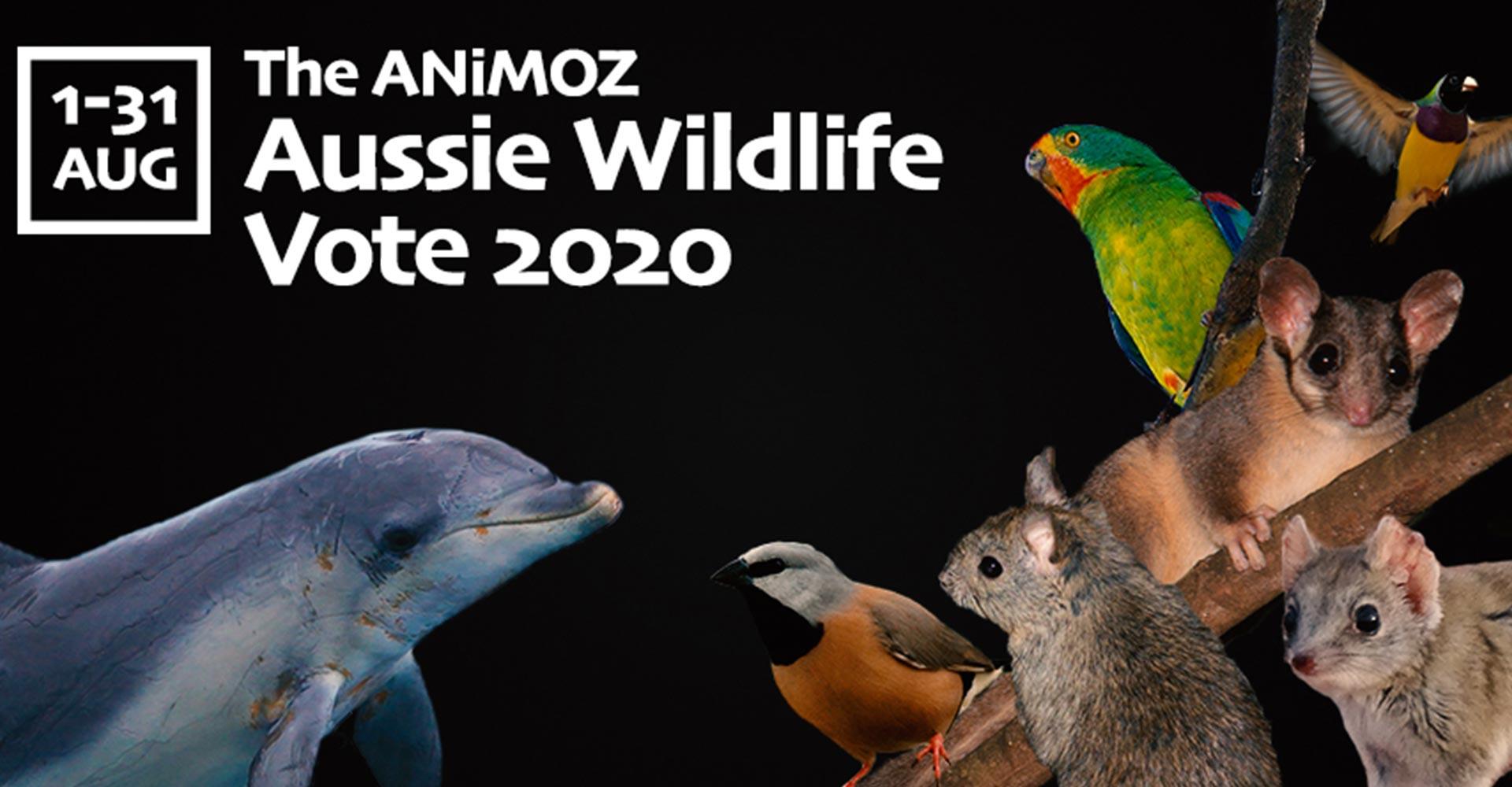 Homepage-VOTE-Banner