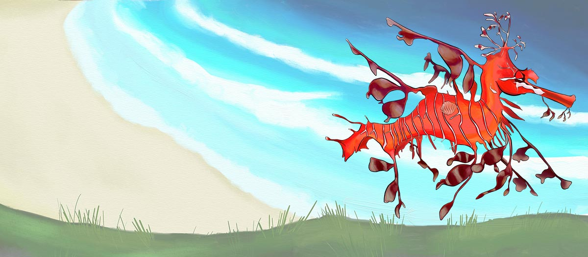 EQUES the Leafy seadragon - Coast BiOME - ANiMOZ - Fight for Survival - The card game of Australian animals.