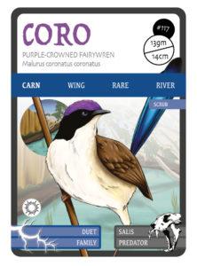 Purple-crowned fairywren, CORO, ANiMOZ, Card game of Australian animals